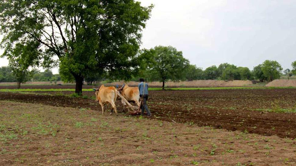 વિફર્યો ગુજરાત ખેડૂત સમાજ, 'આ' ડિમાન્ડ પૂરી કરવા ખખડાવી શકે છે કોર્ટના દરવાજા