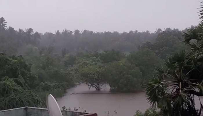 આગામી 48 કલાક સાવધાન.. ગુજરાતના 'આ' વિસ્તારોને ધમરોળશે મેઘરાજા