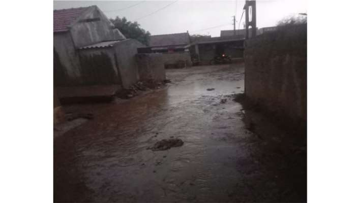 આજથી ઠંડુગાર બનશે ગુજરાત, કમોસમી વરસાદથી કચ્છ થયું પાણી પાણી