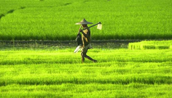 2018ರ ಕೇಂದ್ರ ಬಜೆಟ್ನಲ್ಲಿ ಕೃಷಿ ಸಂಶೋಧನೆ ಹಂಚಿಕೆಯಲ್ಲಿ ಶೇ. 15ರಷ್ಟು ಹೆಚ್ಚಳ